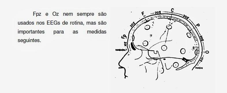 imagem esquemática da lateral da cabeça