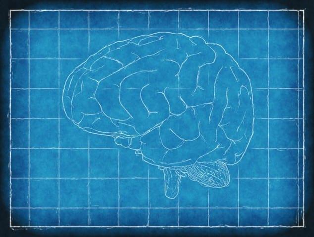 diferença entre AVC e Derrame Cerebral