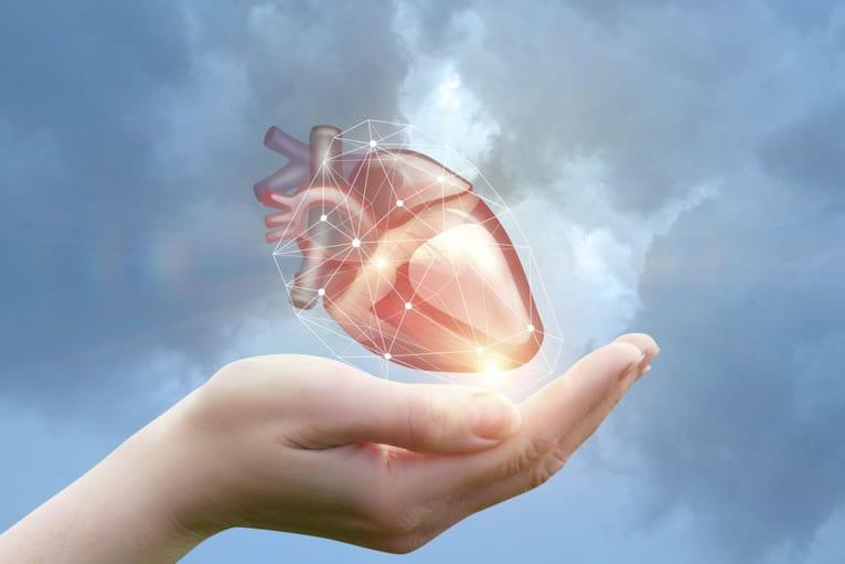 Tipos de exames cardiológicos: 11 exames cardíacos mais realizados